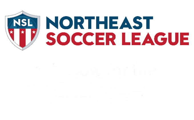 Announcing the Northeast Soccer League
