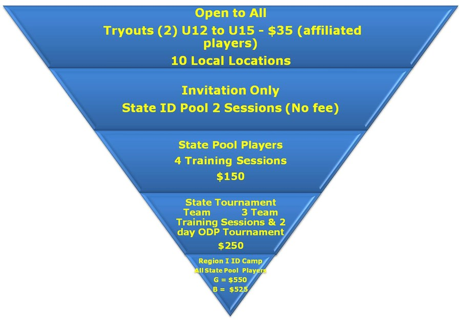 U12 to U15 Process and Cost
