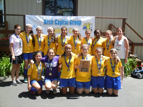 GU15 Champions Valley Stream Vipers
