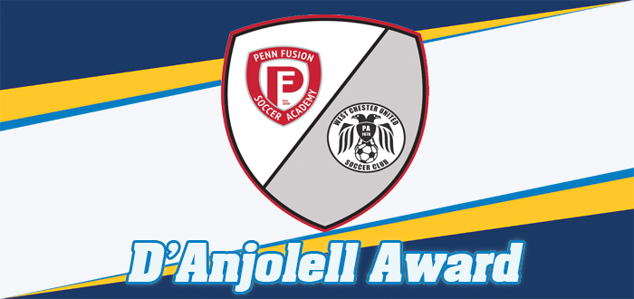 DAnjolell Award website 2018