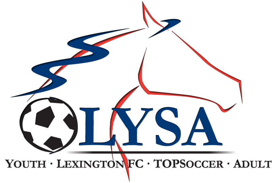 LYSA_logo_new_all_leagues_revised 11-10-2011