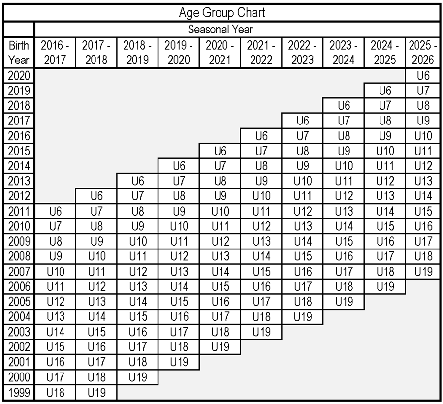 Age Group Chart 2
