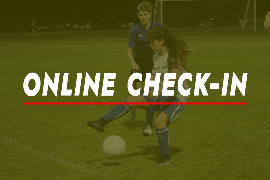 ONLINE_CHECK_IN